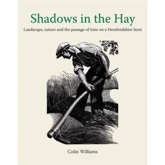Shadows in the Hay cover